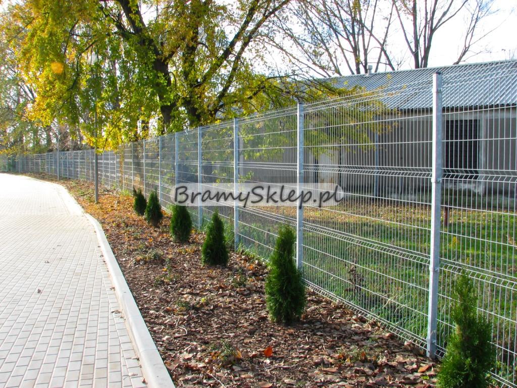 Inne rodzaje Panele ogrodzeniowe 250cm/203cm/5mm - Ocynkowane - Ogrodzenia SM61